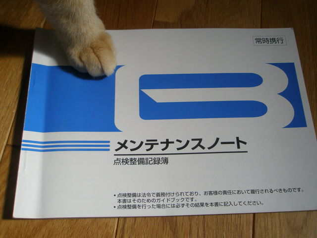 P7060006.jpg